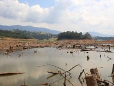 View of drought in Rio Jacarei, region of Joanopolis, interior of Sao Paulo