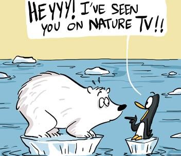 polar bear meets penguin copy copy