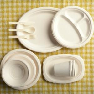 productos-descartables-biodegradaveis